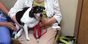 Ruth Rowley and Wolfgang (Pet of the Month – June 2014)