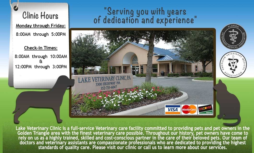 Lake Veterinary Clinic, Serving Lake County, Florida